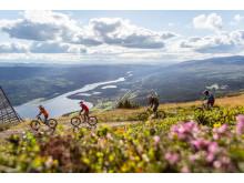 Downhill biking, Åre