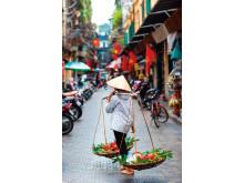 Vietnam_shutterstock_215927044