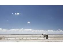 CS-271116-namibia_rx10-034