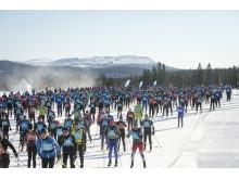 Årefjällsloppet 2013