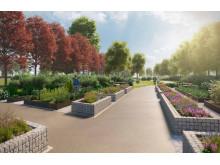 Visualiseringsbild Rosenträdgården