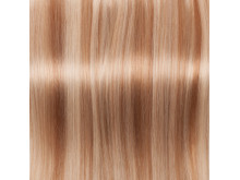 Blond Mix  - The Chad Wood Collection
