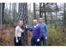 KTH-forskarna Jennie Berglund, Francisco Vilaplana och Jakob Wohlert har detaljstuderat trä.