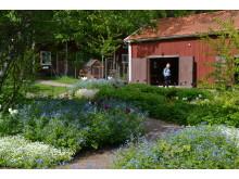 Plommonlunden och täljladan på Astrid Lindgrens Näs