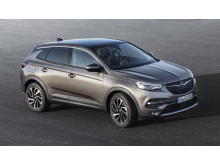 Opel-Grandland-X-307316
