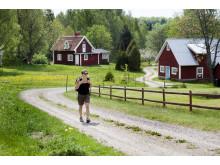 Vandring i södra Småland