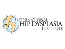 IHDI Logo 600pixWidth
