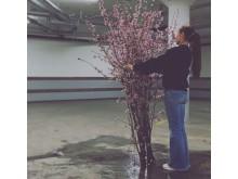 Carola Fogelberg - florist