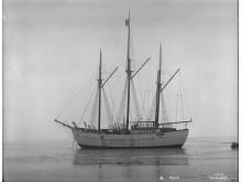 Polarskipet_Maud