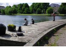 Fiske Strömsholmen