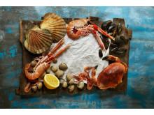 Norwegian shellfish