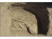 De flesta av resultaten kommer från grav 6 i Kumtepe, utgrävd 1994. Här syns övre delen av ett skelett. Foto: Project Troia, Peter Jablonka.