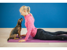 Furry Friend Yoga 2