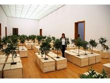Yoko Ono. PEACE is POWER - Blick in die Ausstellung im Museum der bildenden Künste Leipzig