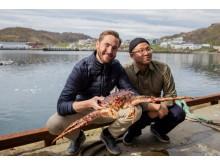 """Norsk kongekrabbe har blitt """"kjendis"""" i Sør-Korea"""
