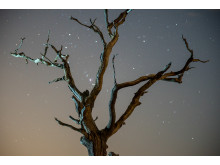 Sony_nightsky_005