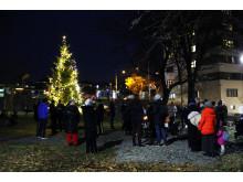 Julegrantenning i Dælenenggata
