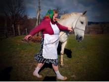 En vit häst från sagorna