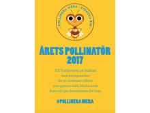 Diplom Årets Pollinatör 2017