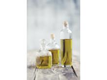 Därför ska du välja olivolja - extra jungfruolivolja innehåller hälsosamma polyfenoler!