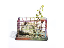 Tetsumi Kudo: Painted cage with an ear (1975-76)