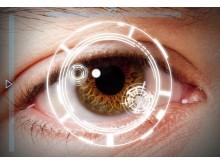 Biometric_eye