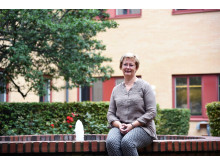 Marianne Boström, Örebro universitet