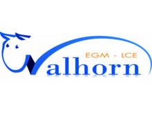 Walhorn logo