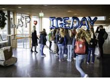 IGE-day på WSP