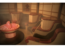 Japanese Salt Steam Bath