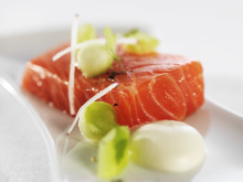 Trucha Fiordo Noruega Plat (2)
