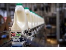 Müller's rHDPE fresh milk bottles