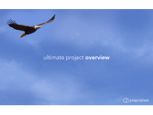 Projectplace: ultimate project overview