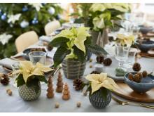 Juldukning i vitt