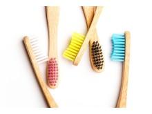 Humble Brush miljø 1