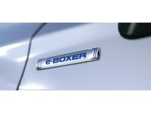 e-BOXER_teaser_picture