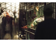 halloween_151130_experiment_3_4