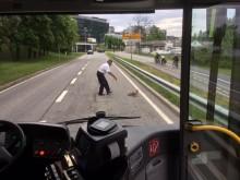 Bussjåfør redder andefamilie