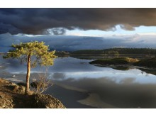 Norwegen bietet beste Bedingungen für den Betrieb von Datenzentren – in den zahlreichen Fjorden und Flüssen können Rechner optimal gekühlt und mit Energie aus Wasserkraft versorgt werden.