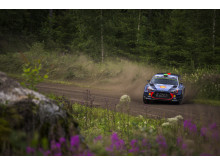 Hayden Paddon - Rally Finland 2017