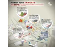 Infographic ECDC