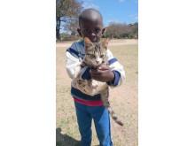 WTG-Weltkatzentag-Südafrika-Tierschutzbildung
