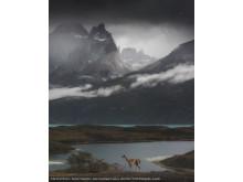 Daniil Korzhonov, Open Landscape & Nature, 2018 Sony World Photography Awards with copy