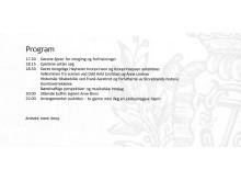 Program Jubileumsarrangement Storebrand 31.05.17