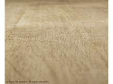 Bona_Brushing_Technology_Floor_2