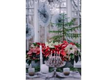 Julstämning med stjärnor tolkat av Åsa Myrberg, atmycasa