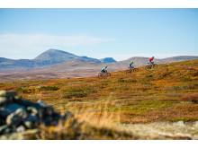Mountainbike mellan Bruksvallarna och Ramundberget