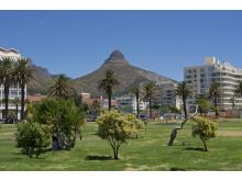 Sydafrika - Lion's Head i Kapstaden