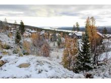 Höglandet i Lofsdalen 29. september