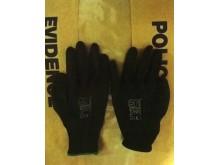 Gloves found in car